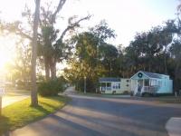 Dec 2012 Tropical Palms (51).JPG