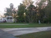 Dec 2012 Tropical Palms (65).JPG