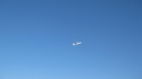 Ada flying with joe 4_1024x574.jpg